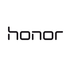 Honor view 2010